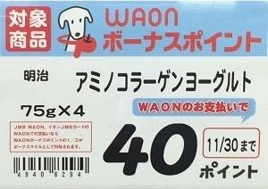 WAONボーナスポイント2.jpg